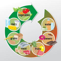 Infographic of groups of food - vegetables, dairy, grains, meat,