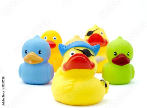 duck,s - 58317738