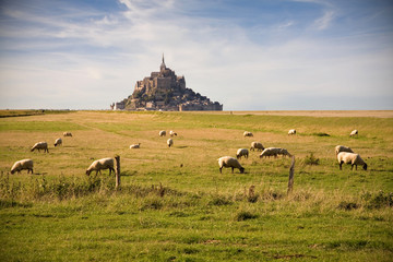 Le Mont-Saint-Michel and sheeps