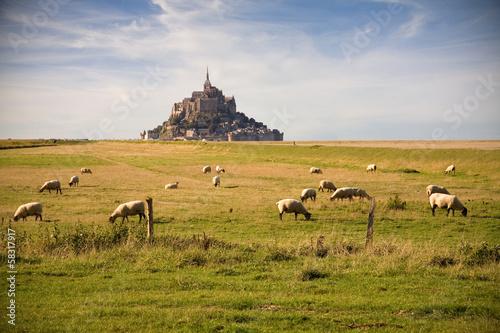 Le Mont-Saint-Michel and sheeps - 58317917