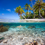 Tropical island under and above water - Fine Art prints