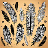 Fashion ethnic feather illustration