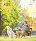 Senior gentleman on bench with his dog relaxing in a park