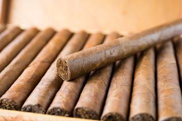 Scatola di sigari