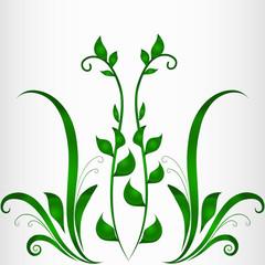 рамка природа растение