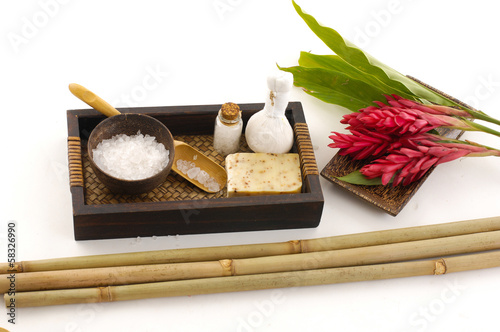 Tropical spa on white background