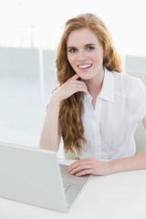 Beautiful businesswoman using laptop at desk