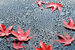 canvas print picture - Water drops on polished car paint with red leafs
