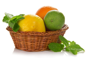 Various citrus fruits in the basket