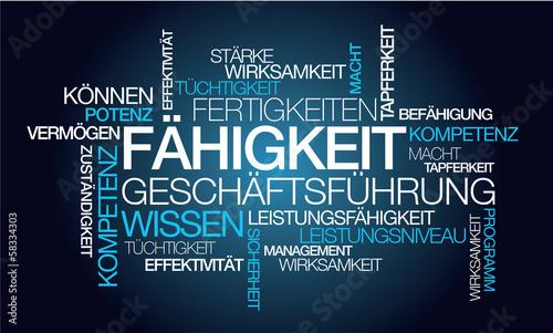 Fähigkeit Geschäftsführung Wissen blau tag cloud Worte