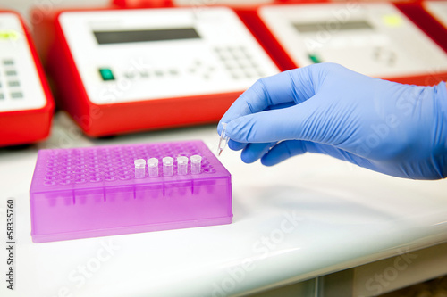Making pcr reaction