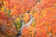 Autumn colours of Jougakura valley, Aomori, Japan