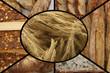 Blé - Pains Variés - Boulangerie