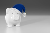 Piggy bank - white pig with blue santa hat
