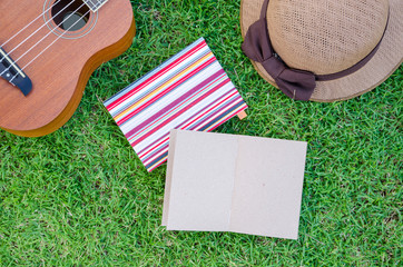 Ukulele lying on meadow with lovely hat and notebook.