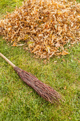 Fall clearing - brush and a pile of leaves