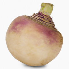 Close-up of a turnip