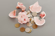 Broken piggy bank with coins