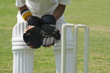 Wicket keeper standing behind stumps