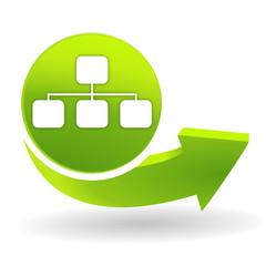 organigramme sur symbole vert
