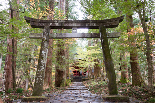 Torii at Takinoo Shrine,Nikko,Japan