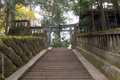 The approach to Toshogu Shrine,Nikko,Japan