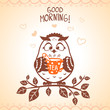 owl morning