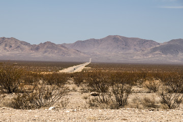 nevada desert and red mountains