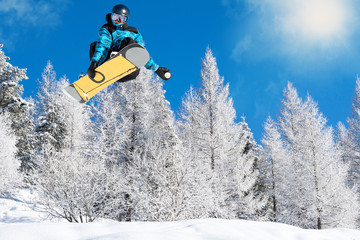 funny snowboard