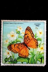 A Stamp printed in CUBA