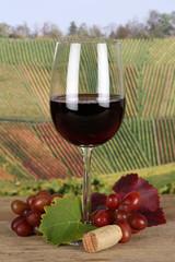 Rotwein in einem Weinglas