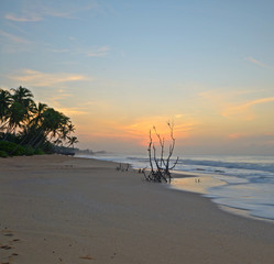 Romantic sunrise on tropical beach
