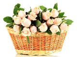 Fototapety Beautiful bouquet of roses in basket, isolated on white