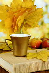 Autumn leaves, cup and book