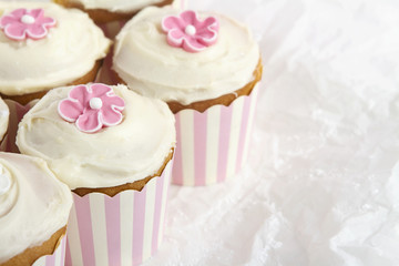 Pink striped cupcakes horizontal