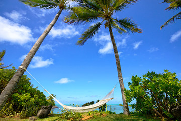 Hammock on tropical beach in Mauritius Island
