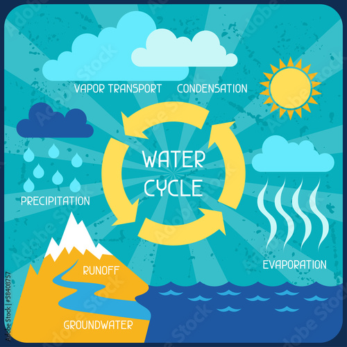 poster of The water cycle. Poster with nature infographics in flat style.