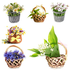 Collage of beautiful flowers in wicker baskets isolated on