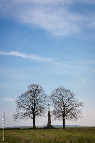 trees and cross