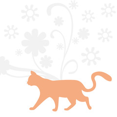 katze orange