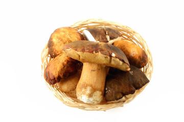 Cesto di funghi porcini con coltello