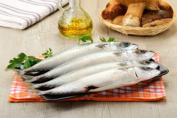 Pesce sgombro fresco pescato