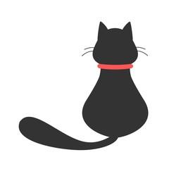 Behind Black Cat