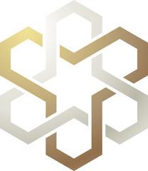 Logo stella ed esagoni singolo