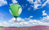 Hot air balloon over cosmos flower fields