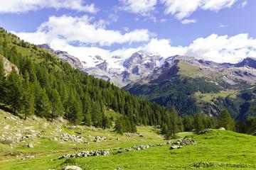 Panorama di montagna con Monte Rosa