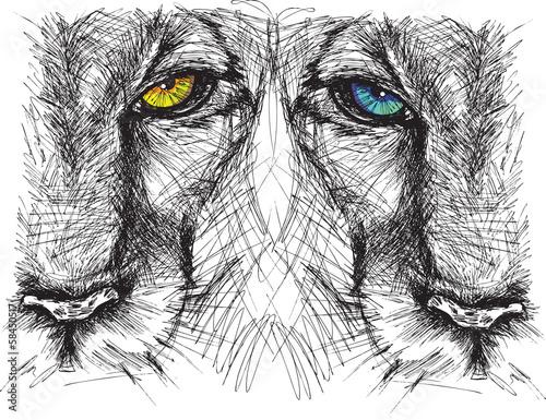 hand-gezeichnete-skizze-eines-lowes-der-intensiv-der-kamera-betrachtet