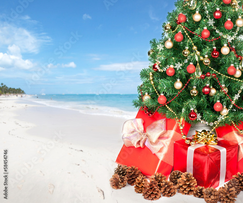 Christmas tree the beach