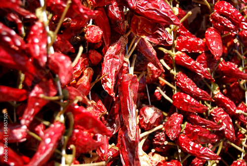 Group of Calabrian chiles