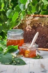 Closeup of honey in a jar and honeycomb
